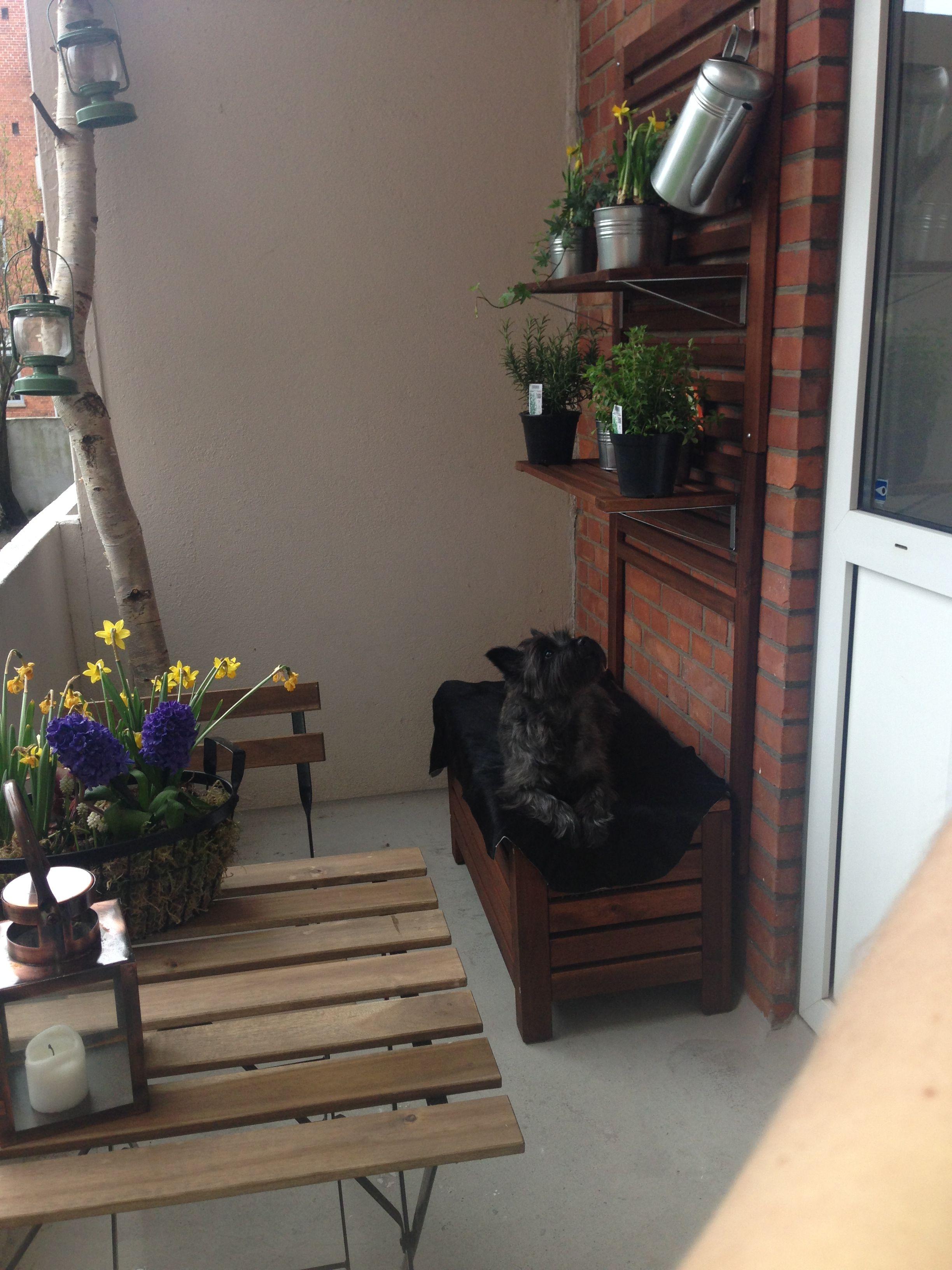Altan inspiration. Bord, stole, bænk/plantekasse og plante ophæng er ...