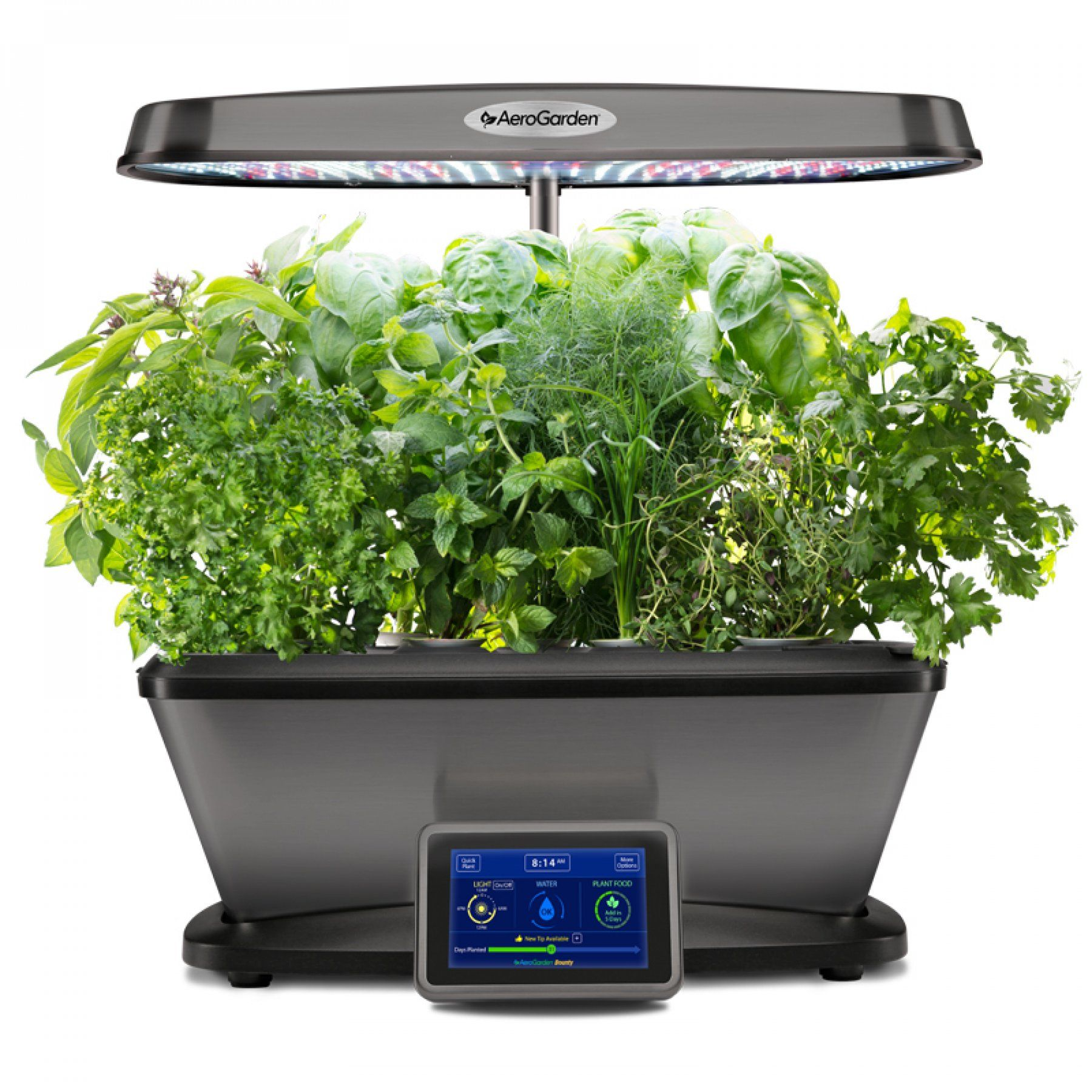 Bounty Elite Plants Grown In Water Potted Plants 400 x 300