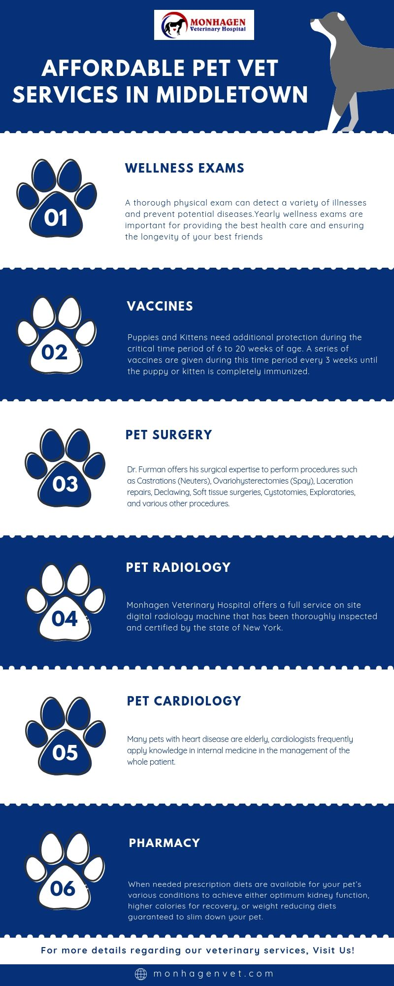 Monhagen Veterinary Hospital Is Dedicated To Providing Experienced And Compassionate Pet Vet Services In Middletown For M Pet Vet Veterinary Hospital