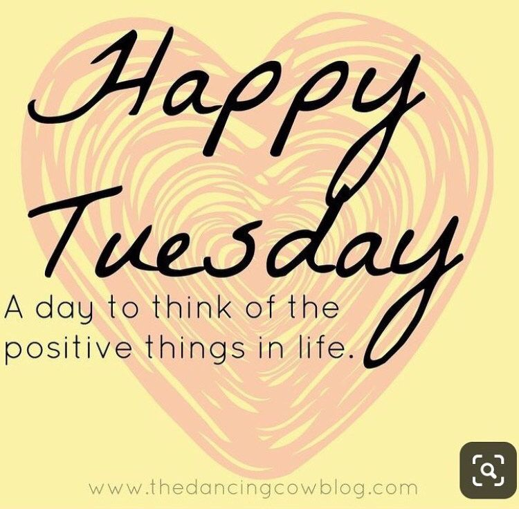 Happy Tuesday Happy Tuesday Quotes Tuesday