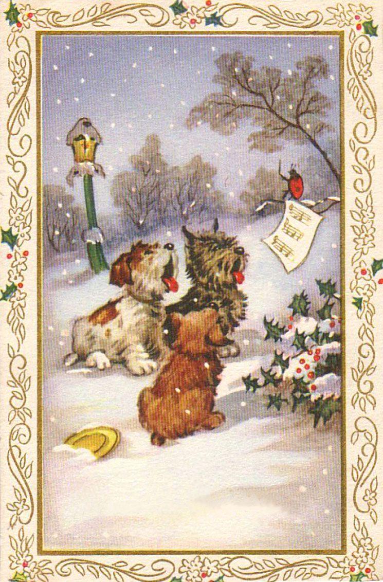 Поздравление, старые открытки с собакой