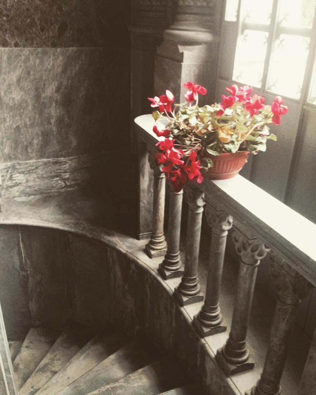 #archilovers  #architecture  #bnw_italian  #bestphotogram_bnw  #casadiriposogiuseppeverdi  #ig_milan  #italiapm  #igersmilano  #ilovemilano  #ig_lombardia  #igers_milano  #igerslombardia  #LOVES_UNITED_LOMBARDIA  #loves_lombardia  #MILANOCITYUFFICIALE  #milano_forever  #milanodavedere  #phototag_bnw by __ro___