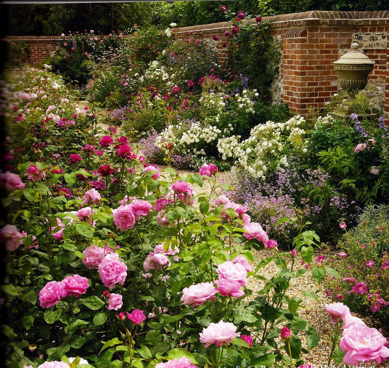 Country Garden Decorating Ideas Lovely Photograph: English Rose Garden Designed By