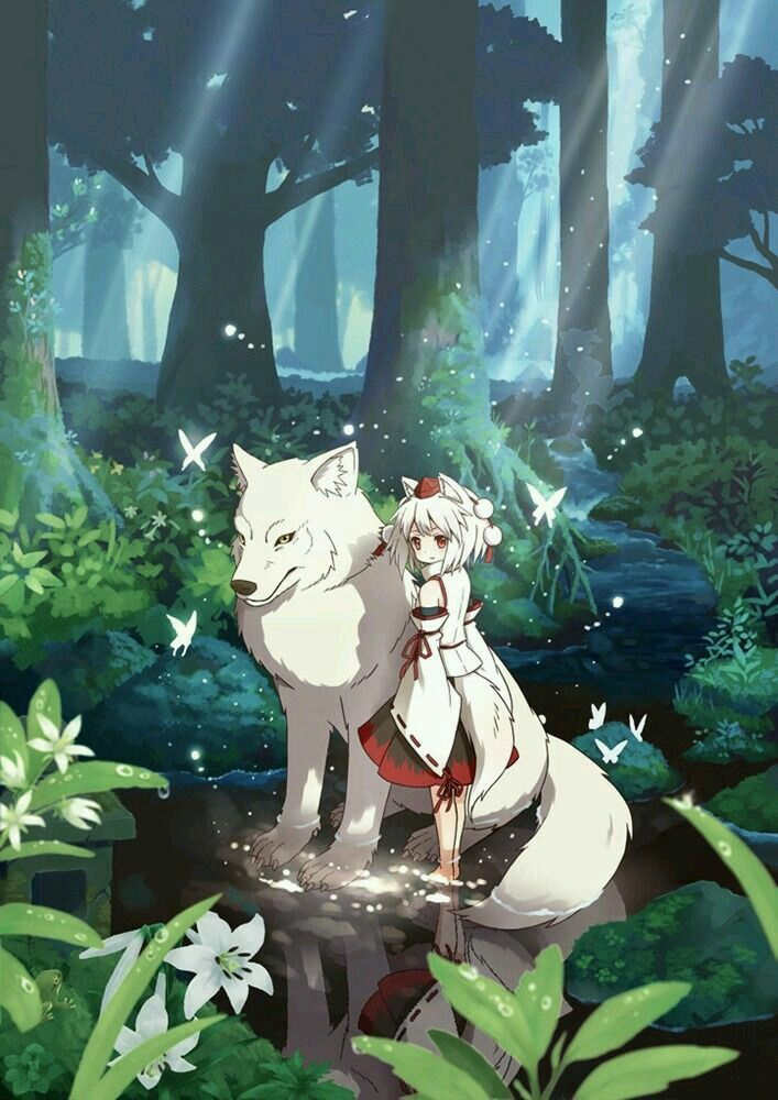 Photo of anime forest cute kawaii girl wolf image illustration
