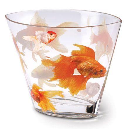 Koi glass vase koi flower vases and glass for Koi fish bowl