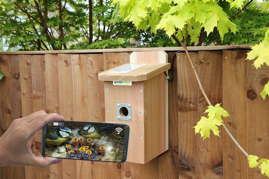 Ip camera bird box system ip camera system ip camera