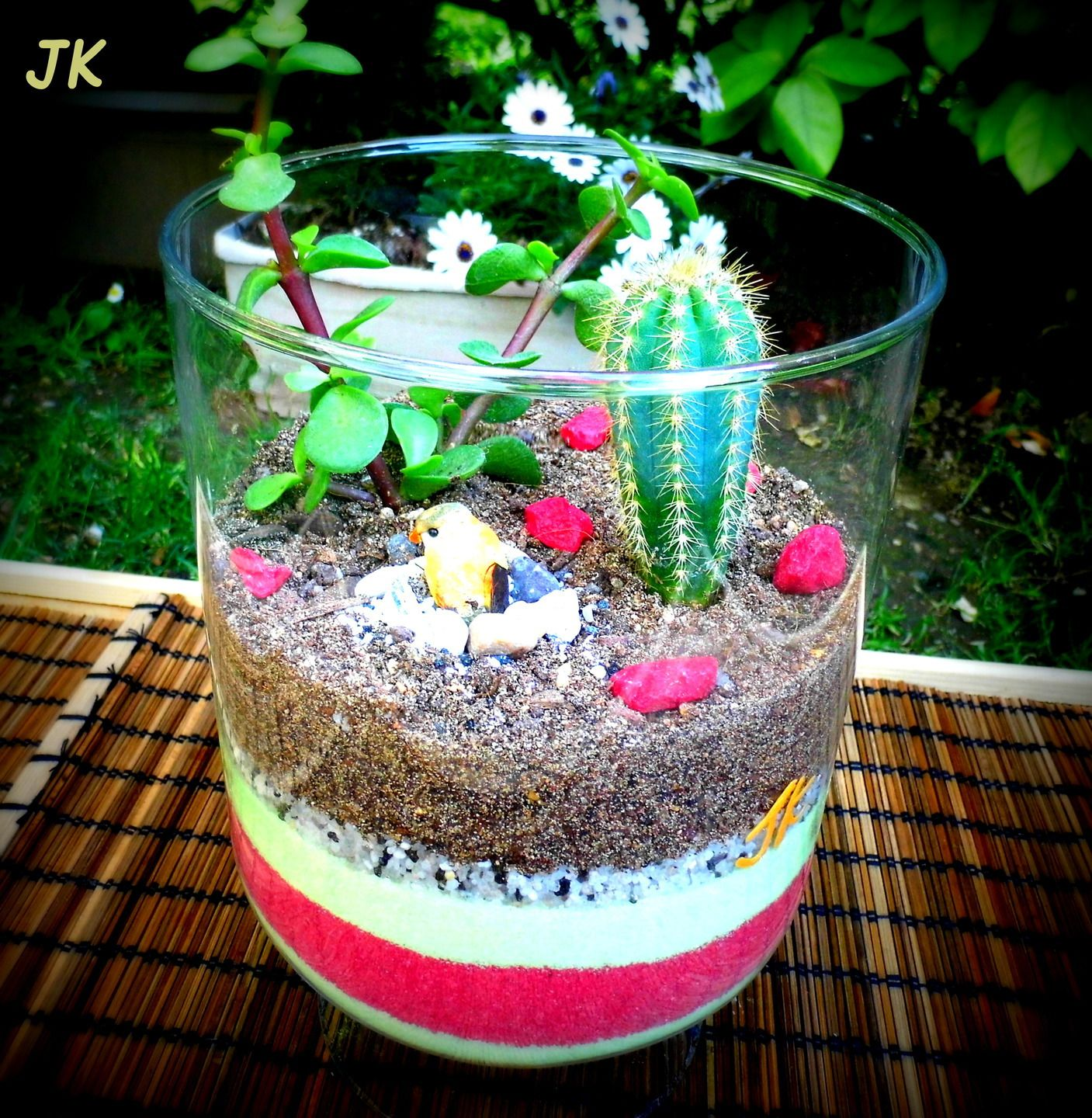 Vase en verre terrarium de plantes grasses miniatures for Decoration petit jardin maison