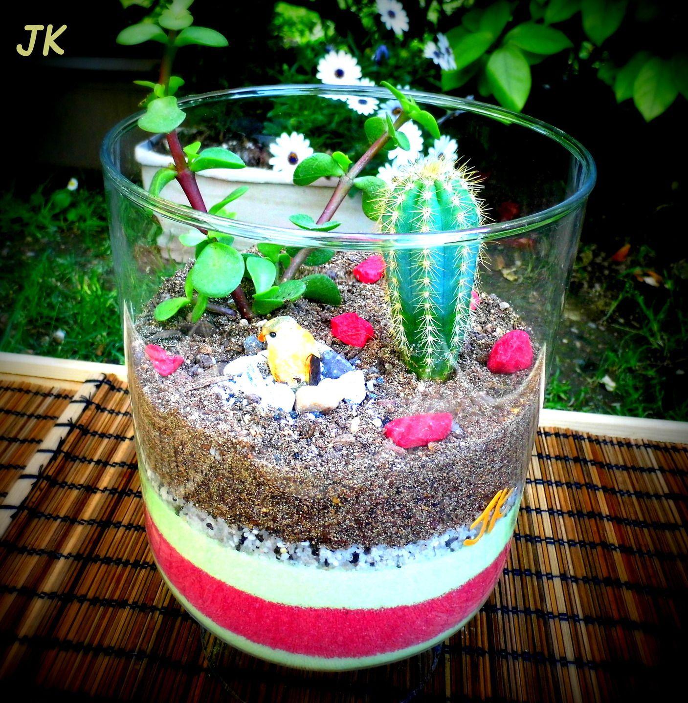 Vase en verre terrarium de plantes grasses miniatures - Petit terrarium ...