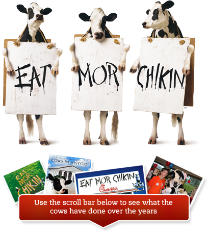20 Years of Cows Eat more chicken, Eat mor chikin, Cow