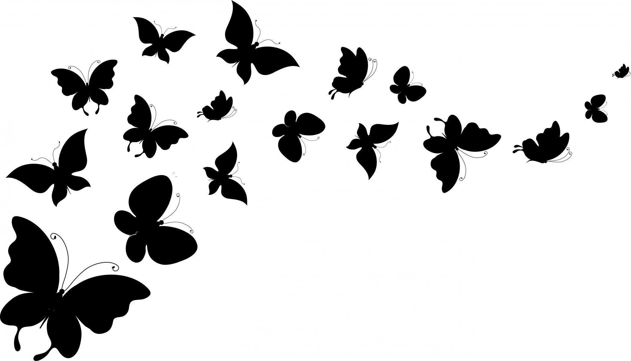 Butterfly Silhouettes Wings Background White Hd Wallpaper Butterfly Clip Art Black Butterfly Fairy Silhouette