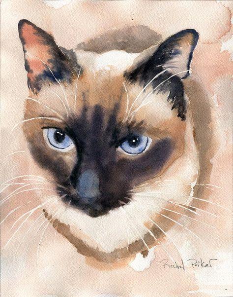 Drucken Sie Applehead siamesische Katze Kunstdruck von einem Aquarell große große riesige Katzenliebhaber Geschenk Siegel Schokolade Punkt Dekor traditionell #giftsforcats