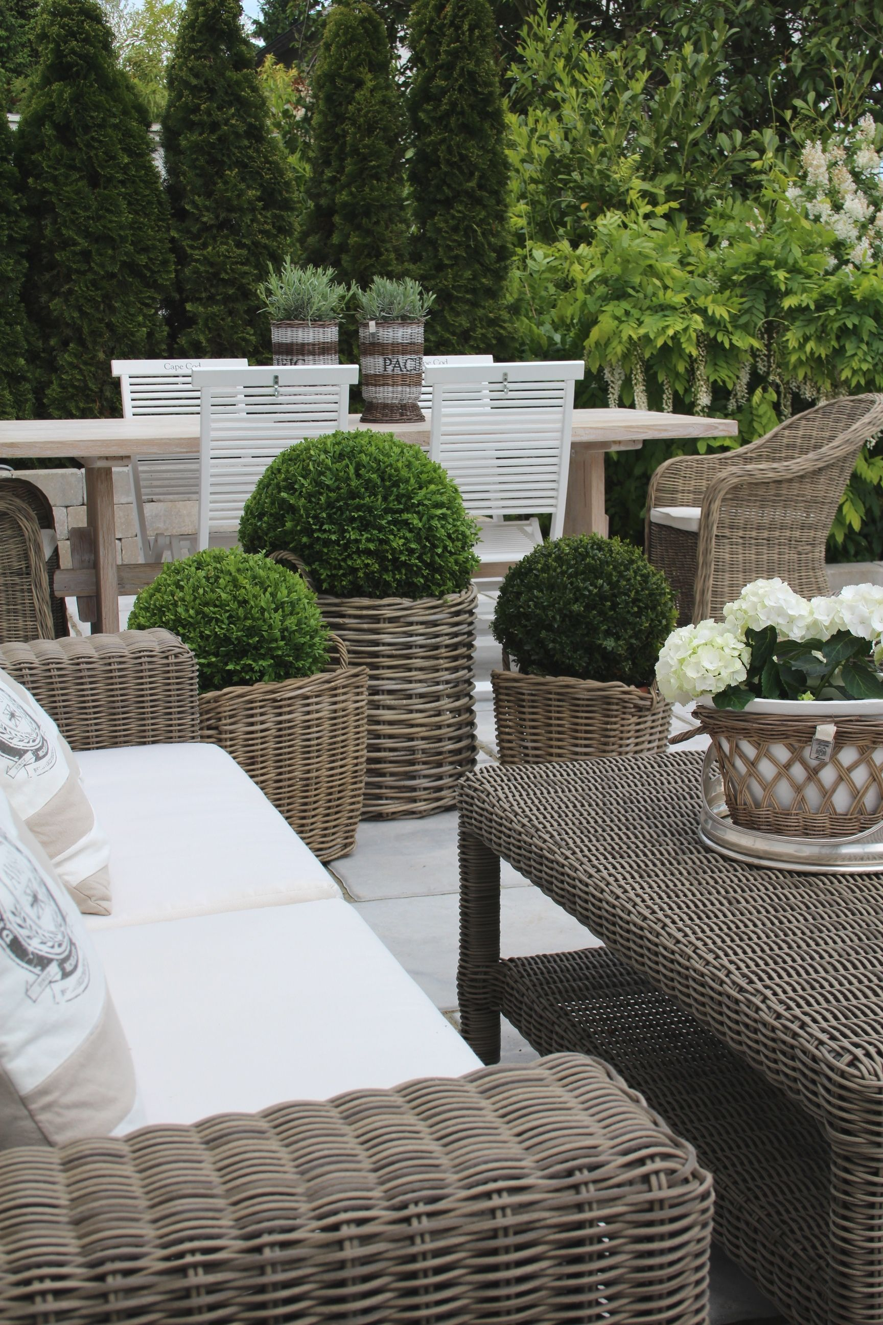 Terrace garden details - Boxwoods Are Perfect For Pots Urns