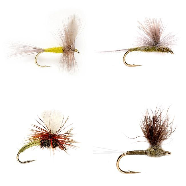 "Classic Pro Tips: How to ""Trigger"" a Trout Strike - Orvis News"