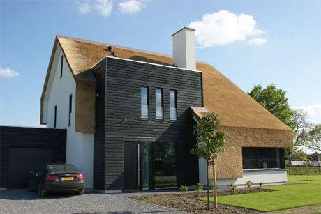 Modern huis met riet house for Huizen architectuur