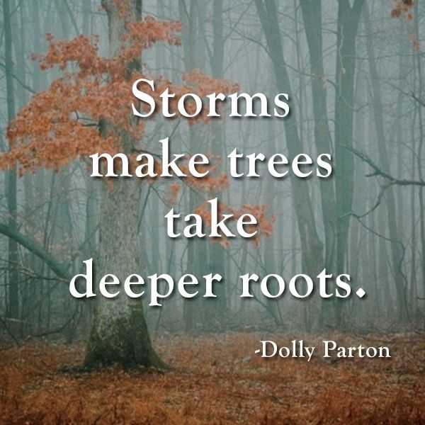 quotes about trees and strength | Pinned by Aspira Continuing Education (Aspirace.com)