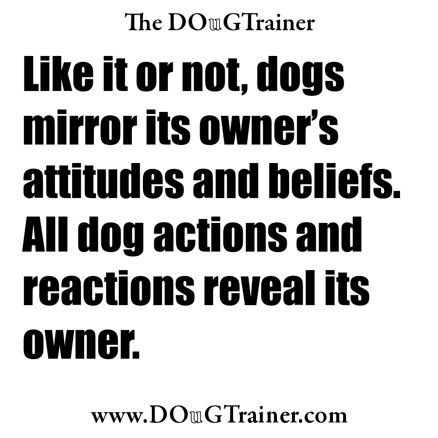 Once the language is learned, an unhealthy owner cannot hide; his dog will always tell the truth about him.