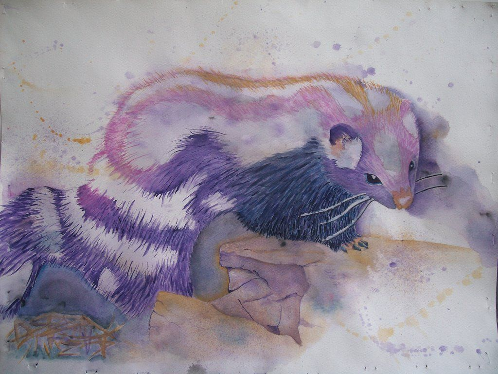 purple skunk by littlemads skunks pinterest