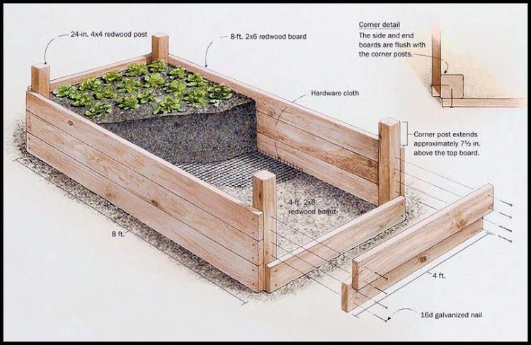 Professional Guide To Building Raised Garden Beds Building Raised Garden Beds Building A Raised Garden Vegetable Garden Raised Beds