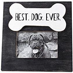 Image Result For Best Dog Ever Frame Bella Pinterest Dogs Dog