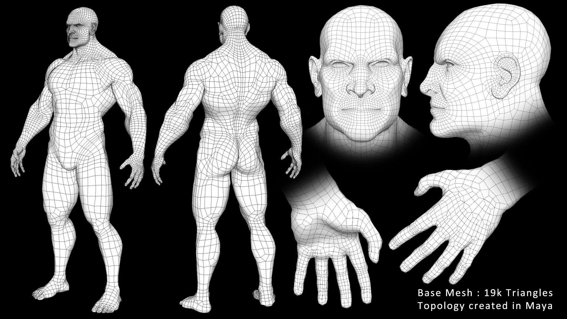 ArtStation - Male Anatomy Study, H Mason Holly | Blueprints 3D ...