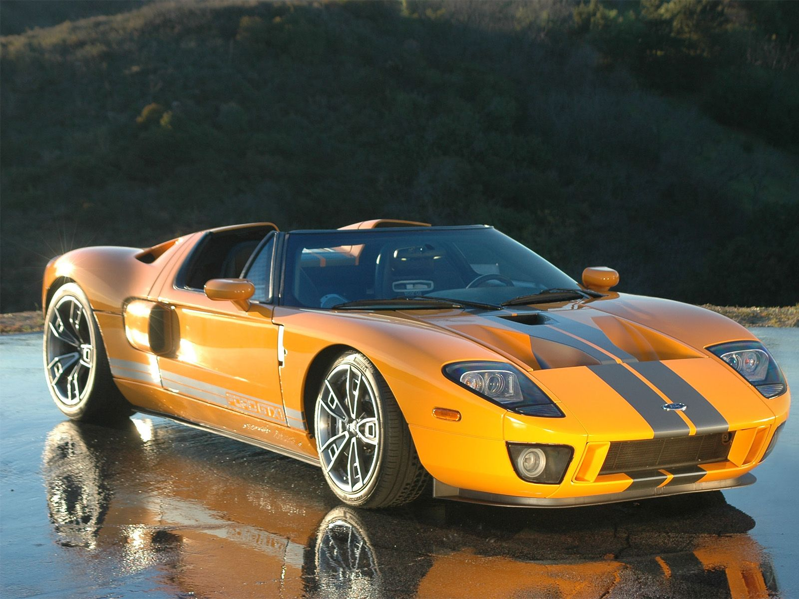 Ford Gt 2005 No Roof Google Search Ford Gt Concept Cars