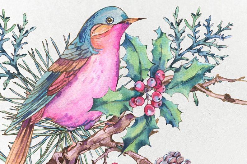 Fall Clipart. Winter Watercolor Bird Clipart Watercolor Woodland Clipart
