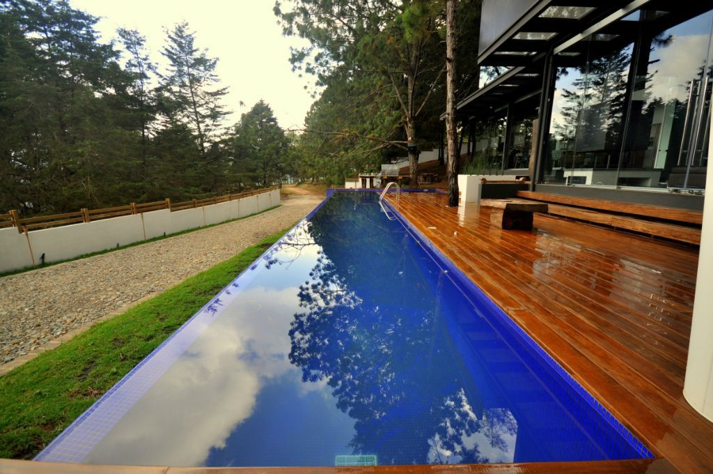 a lap pool in my back jungle