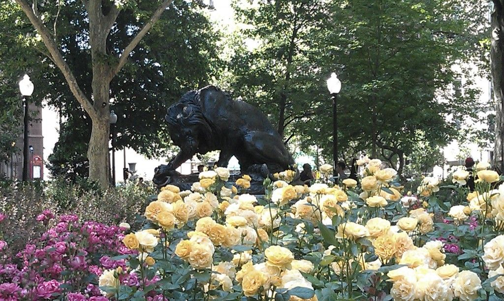 Public Art And Rose Garden Rittenhouse Square Philadelphia Pennsylvania