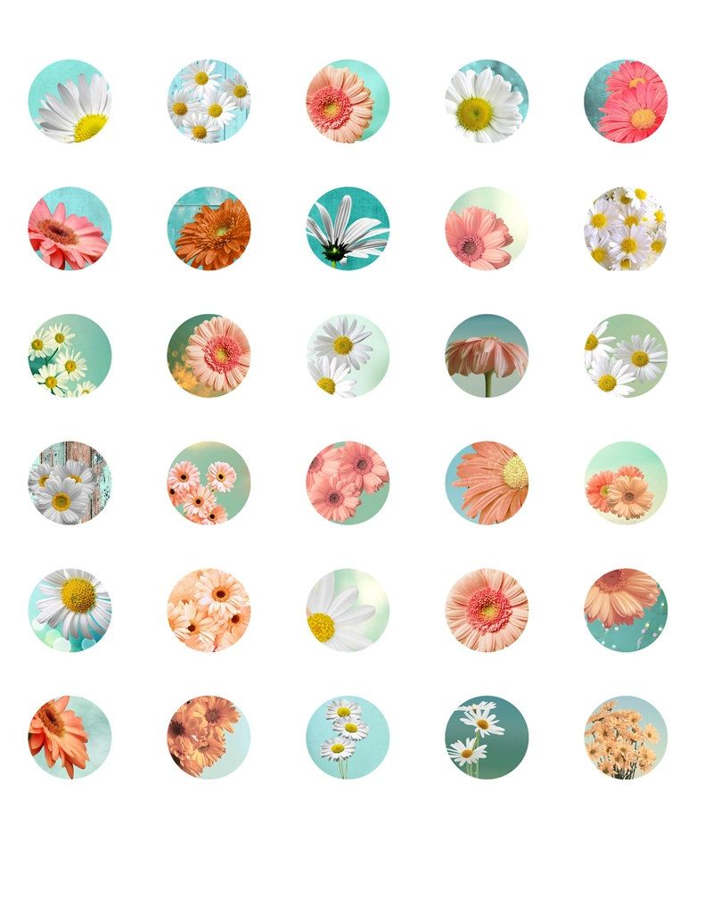 cute 1 u0026quot  circle flowers  u0026quot modern daisy u0026quot  digital collage sheet  printable digital download craft