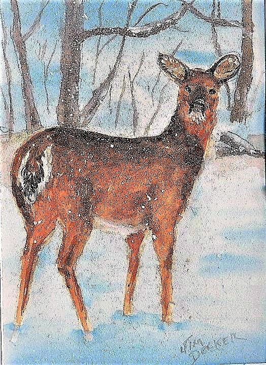 DEER IN THE SNOW - jimdeckersartwork - Paintings & Prints Animals Birds & Fish… | ArtPal thumbnail
