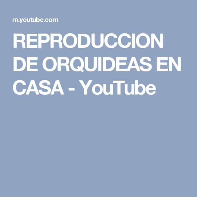 REPRODUCCION DE ORQUIDEAS EN CASA - YouTube