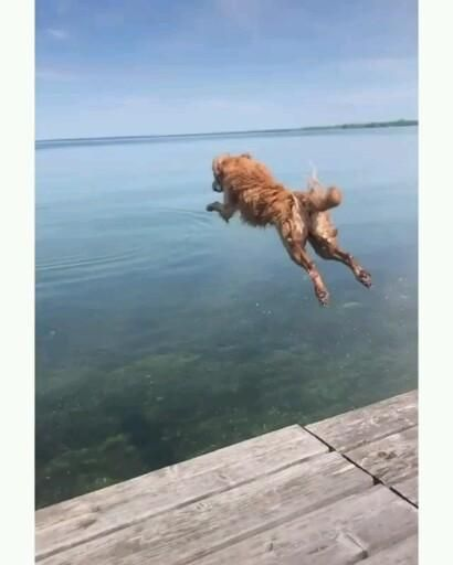 Jumping into summer like ...😍