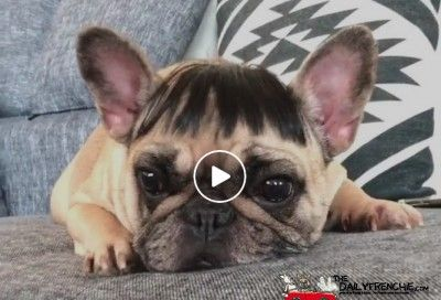 Neue Frisur! Steht die mir?
