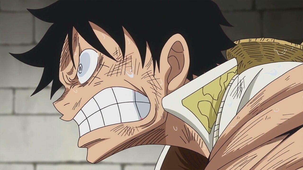 Luffy One Piece Episode 816