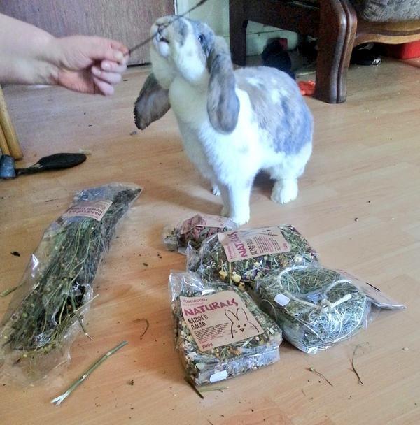 mmm Nom Nom Nom #BunnyBox