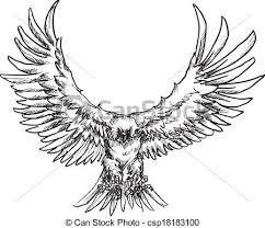 Bildergebnis Fur Fliegender Vogel Gezeichnet Falke Vogel
