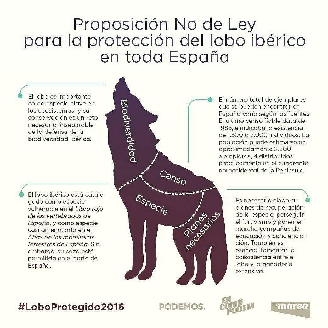 Barripdmx On Instagram Recordáis Que Lo Decía Félix Rodríguez De La Fuente Protejamos Al Lobo Ibérico Loboprotegido2016 Instagram Posts Instagram Felix