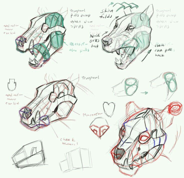 Pin by Elwis Souza Silva on Bases para desenho | Pinterest | Monsters