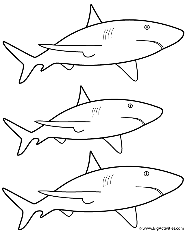 3 Great White Sharks Coloring Page Sea Marine Shark Coloring Pages Great White Shark Shark Quilt