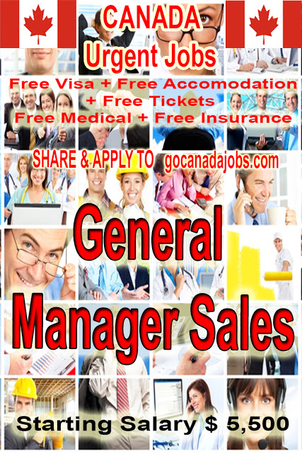 General Manager Sales Job Search In 2020 Jobs For Teachers Job Search Job Career