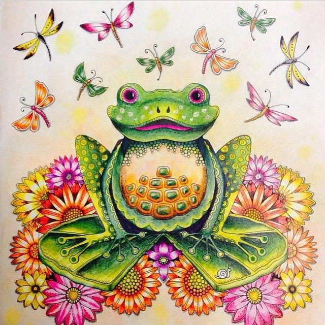 sapo jardim secreto ana flavia pinterest colorir livro