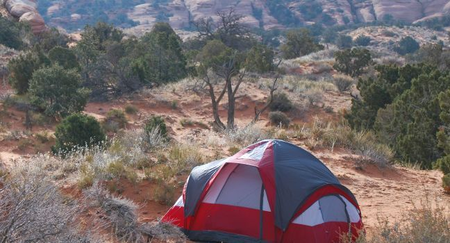 Arches National Park Travel Guide - Expert Picks for your Arches National Park Vacation | Fodor's