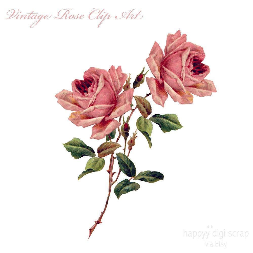 Digital Rose Clip Art Instant Download Vintage Rose Png Etsy Vintage Roses Clip Art Rose Clipart