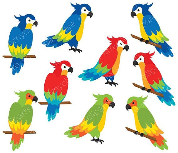 Birds tropical. Parrots clipart palm leaves
