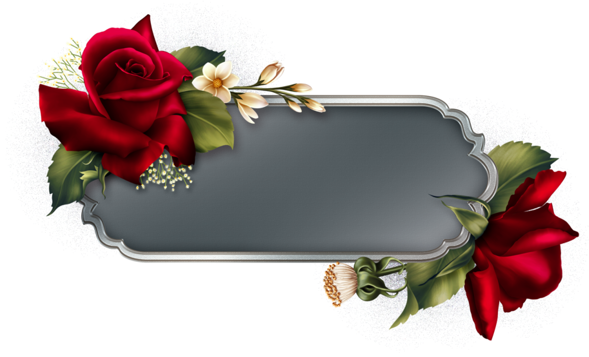 0 173566 85e30043 orig | Цветы, Розы, Рамки