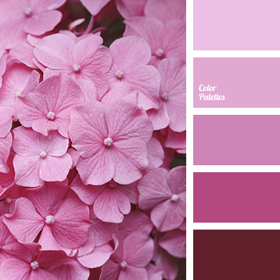Color Palette 3245