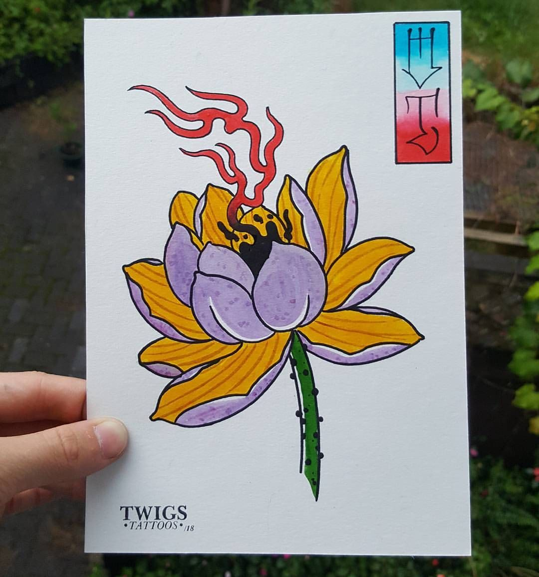 3 lotus flower painting a day for 20 days available to tattoo lotus flower painting a day for 20 days available to izmirmasajfo