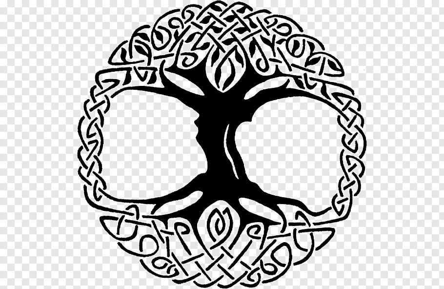 Pin By Odette Peel On Knotwork Celtic Knot Drawing Celtic Knot Celtic Tree Of Life