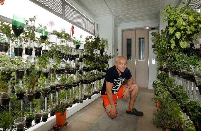 Pin On Urban Farming
