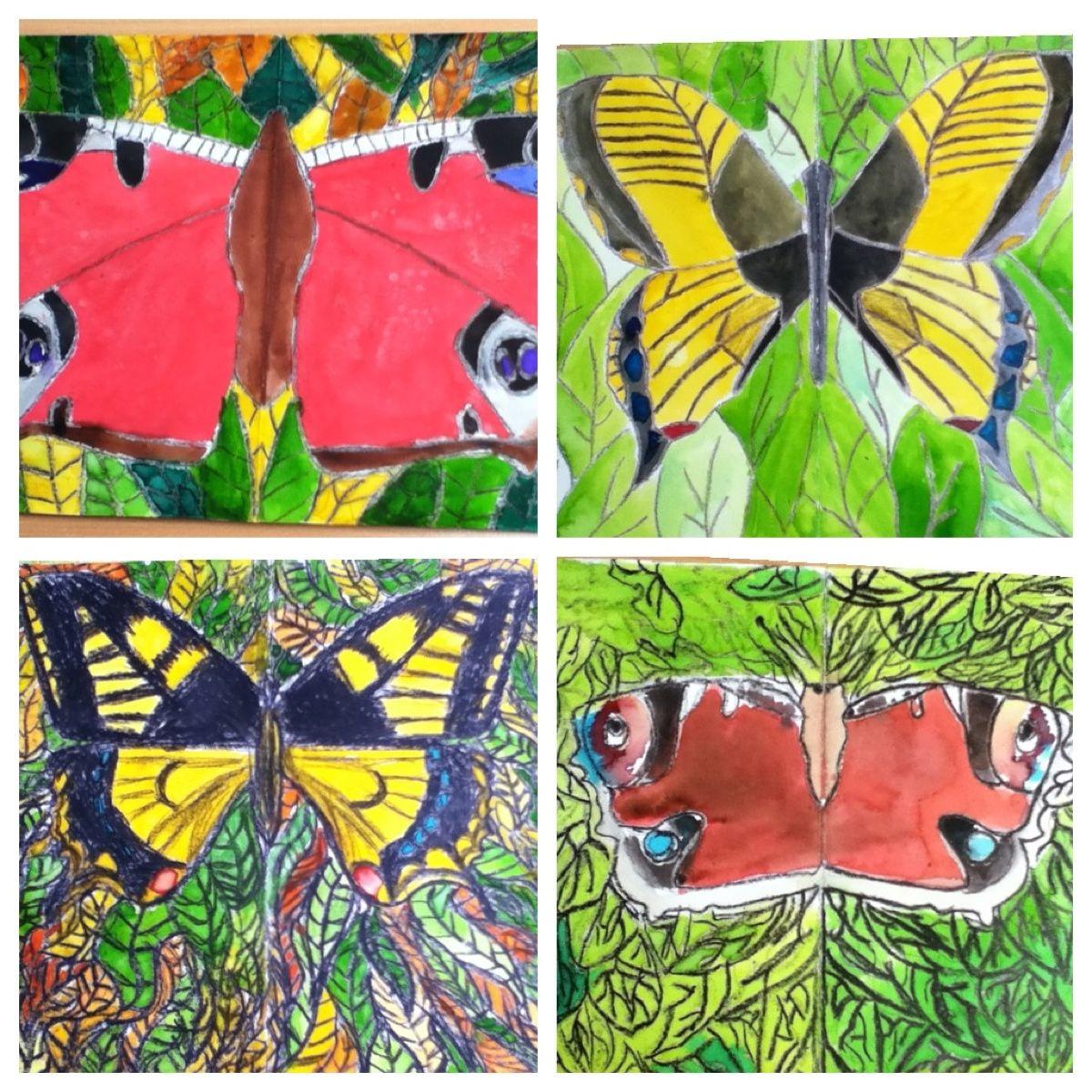 6th Grade: Crayon butterflies